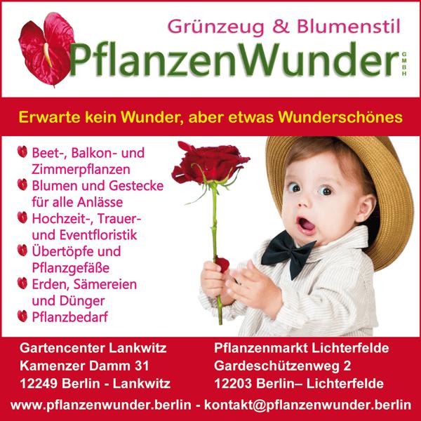 Jobs bei PflanzenWunder - Florist/in + Verkaufsgärtner/in gesucht -