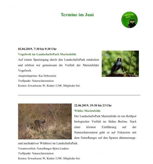 Termine für Juni und Juli im LandschaftsPark Marienfelde und auf der Naturschutzstation Marienfelde.