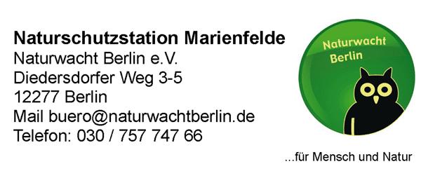 Naturschutzstation Marienfelde: Neue Termine für Juli / August
