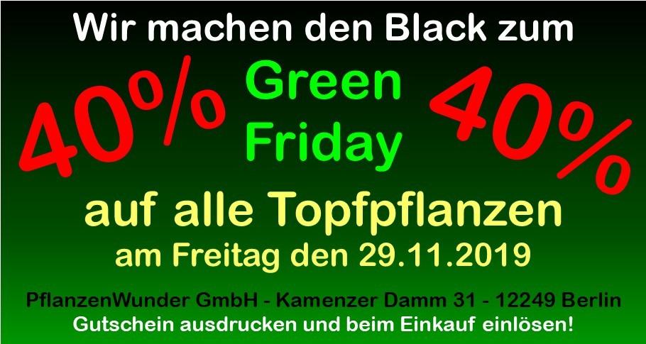 News von PflanzenWunder GmbH in Berlin Marienfelde & Lankwitz
