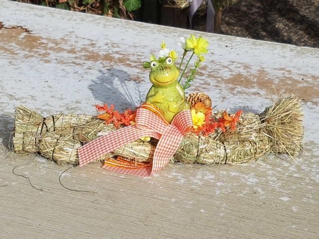 News von Blütentraum - Lust auf Frühling ?